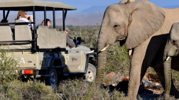 Safari in Sanbona Wildlife Reserve