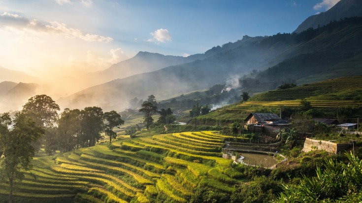 Rice paddies seen while trekking in Sapa