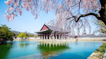 Gyeongbokbung palace in seoul