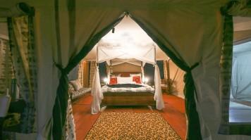 Serengeti Central Camp