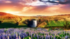 Skogafoss waterfall in south of Iceland