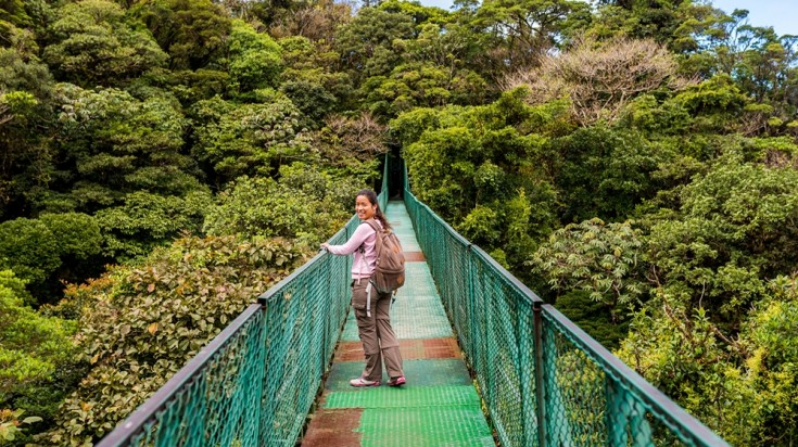 Monteverde Forest has hanging bridges linking to most areas of the park.