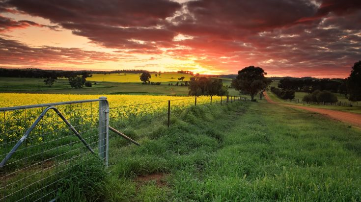 Spring in Australia is the best time to visit the country.