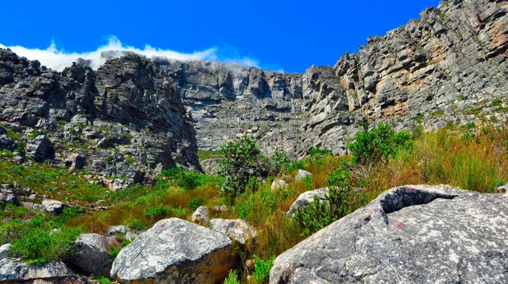 India Venster trail on Table Mountain Hike