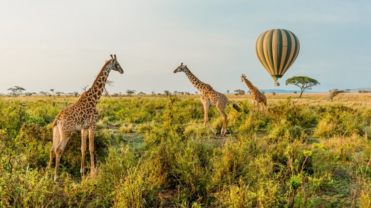 Tanzania is where adventure and eco-tourism come together.