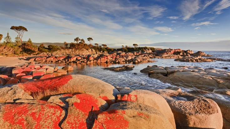 Bay of Fires consists of stones covered with red lichen.