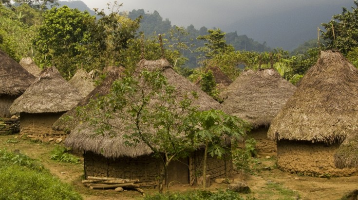 Kogi community at Tayrona National Park live in traditional huts