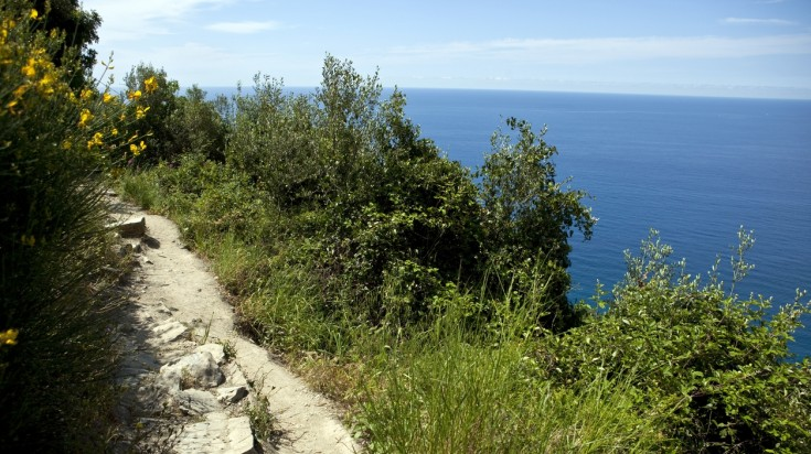 Cinque terre hiking—one of the the trails to take is, the trail 7a