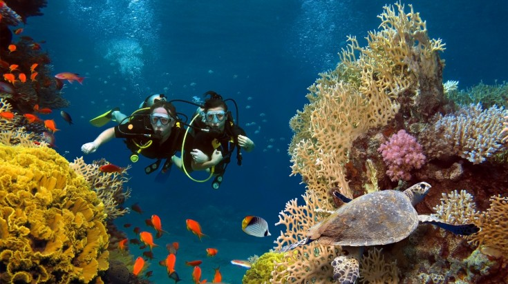 Scuba diving is a wonderful activity in Australia