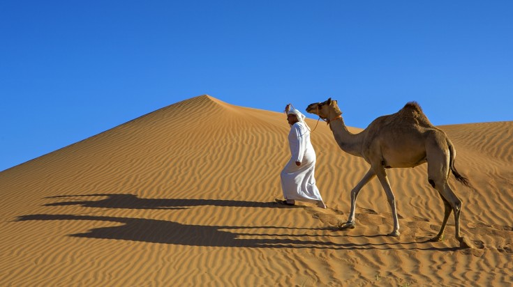 Things to do in Dubai camel riding