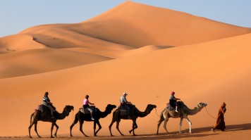 Camel trekking in Sahara is a recommended things to do in Morocco