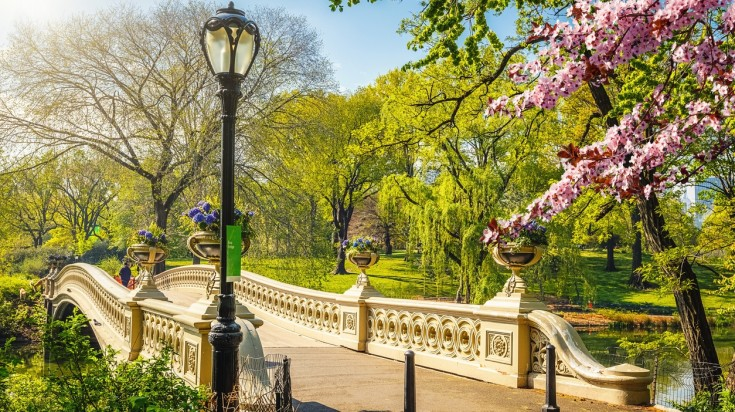 Things to do in New York Central Park