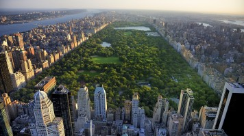 A huge patch of lush, green park amidst the skycrappers in New York