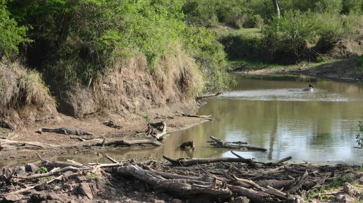 Grumeti River
