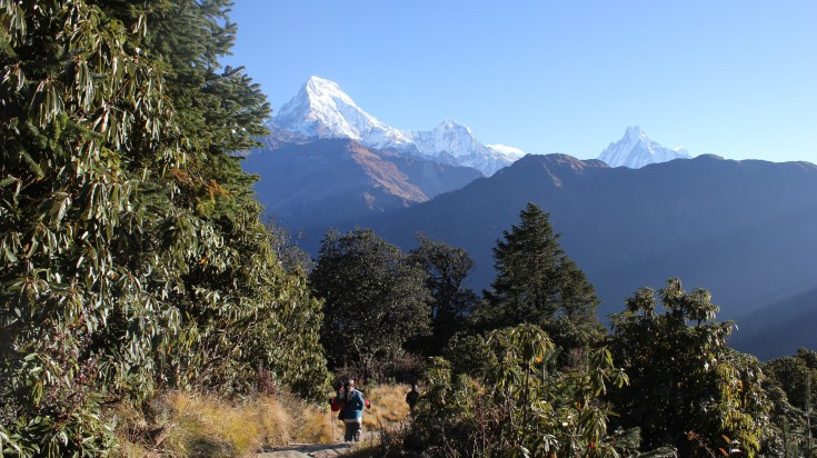 Langtang is a very famous trek route.