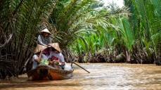 Cruise through Mekong River Delta.