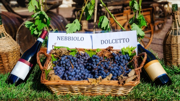 Top cities in Italy for wine tasting, definitely Barolo worth a mention