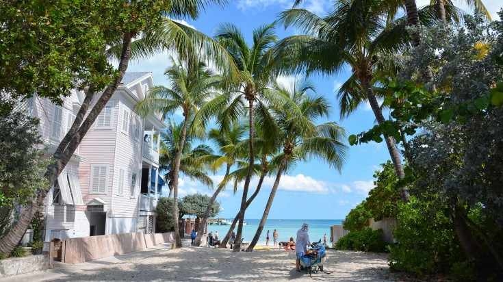 Palm trees line up the beach of Florida Keys with quaint white houses