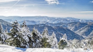 Vacation packages in Germany demands a visit to the Black Forest