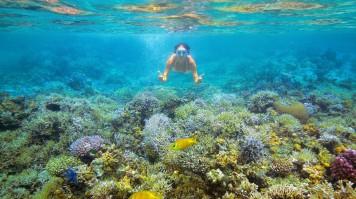 Diving in Vietnam