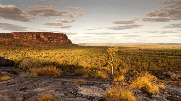 View of Kakadu National Park