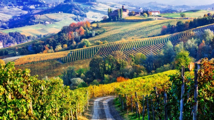 When thinking of Tuscany, an image of rolling green vineyards, pink-orange sunsets and winding tree-lined country roads most likely pops up.