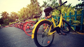 A colorful row of rented bicycles