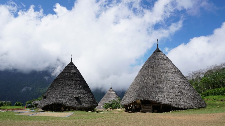 When on Flores Island, visit the Wae Rebo village