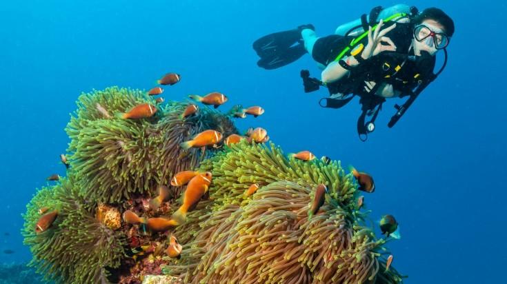 water sports dubai scuba diving
