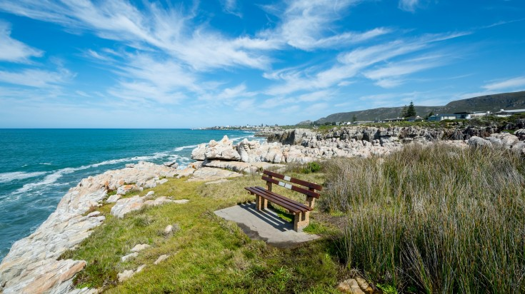 Whale Watching Land tours in Hermanus