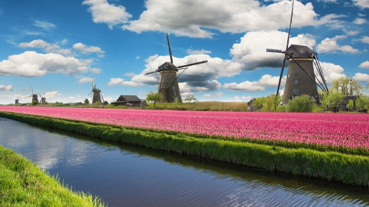 Looking for a thing to do in Netherlands? Visit the windmills.