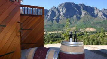 Wine Tasting at Haut Espoir in Cape Town