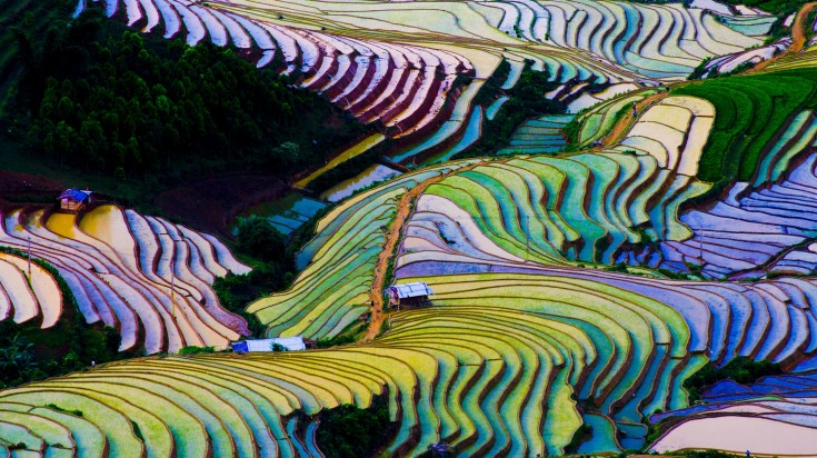 Flooded rice terrace in Yunnan province of China during winter