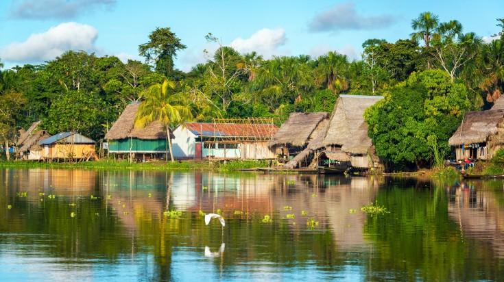 Peruvian Amazonia is the area of Amazon rain forest that falls inside Peru.