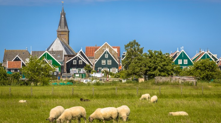 Visit the windmills and the houses as things to do in the netherlands