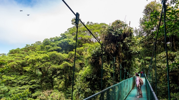Ziplining in Costa Rica's cloud forests of Monteverde
