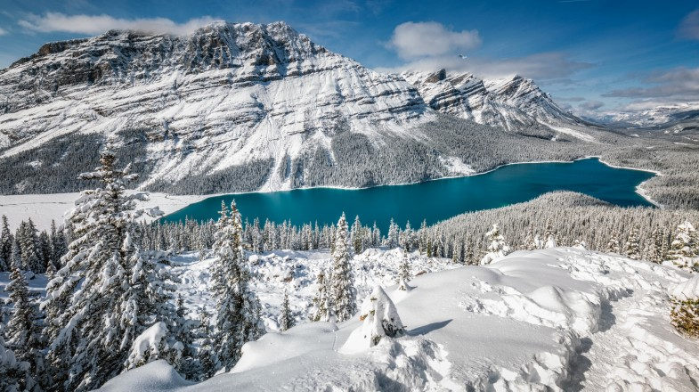 If you're planning to spend the winter in Canada, it is a must that you visit Banff National Park as it offers various activities for all traveler types.