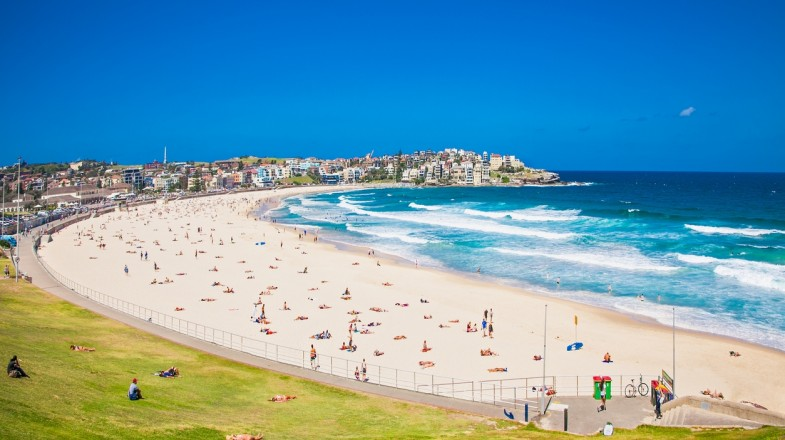 Sydney has over 100 beaches that are perfect for surfing.