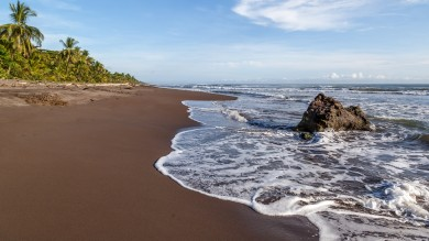 Waves hit a sandy beach in Tortuguero National Park
