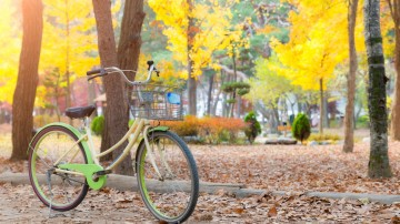 Cycling in South Korea can introduce you to many variety of trails