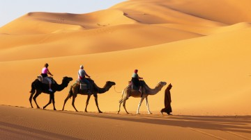 Taking a desert safari in Dubai