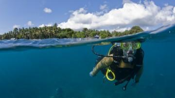 Diving in Bali consists of exploring shipwrecks, discovering rare marine animals and visiting amazing natural rock formations.