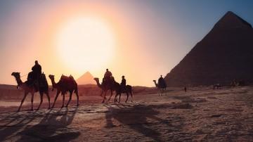 People enjoying camel rides around the pyramids in Egypt.