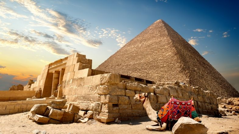 Marvel at the ancient pyramids of Giza, learn medieval history through the mummies, or visit the plenty churches and monasteries, when on a tour in Egypt