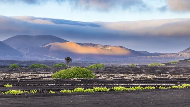 Extinguished volcanoes in Timanfaya National Park