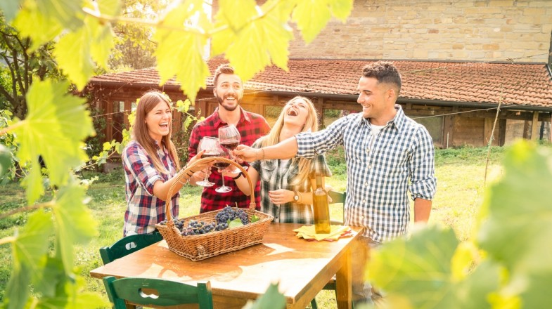 Hunter Valley is a popular wine region near Sydney that offers more than just a stroll through the vineyards.