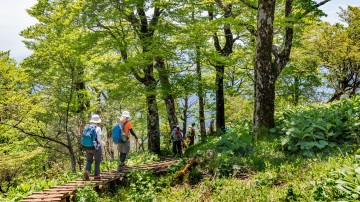 A country with dominating mountains and volcanoes, Japan is a holiday haven for hikers alike.