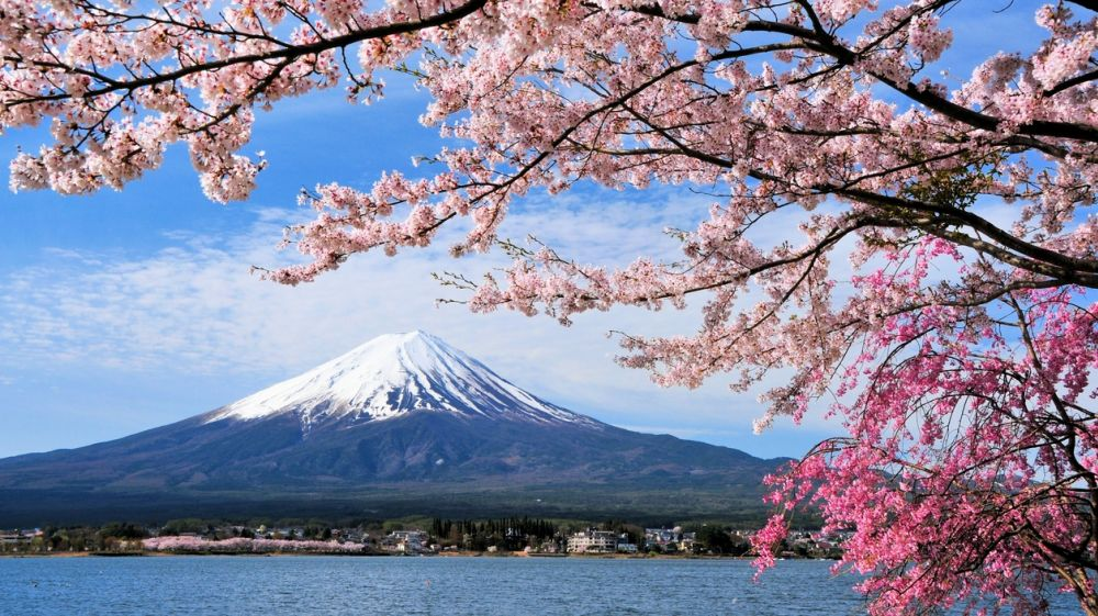 Best Japan Tours Holiday Packages Compare Prices - Japan tour