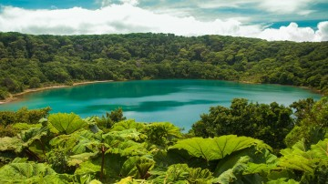National parks in Costa Rica have the richest concentration of biodiversity.