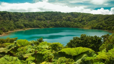 Costa Rica has the richest concentration of biodiversity in its national parks.